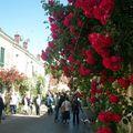 Festival des Roses 2009 (34)