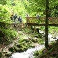 Juin 07 Pont Perreau (31)