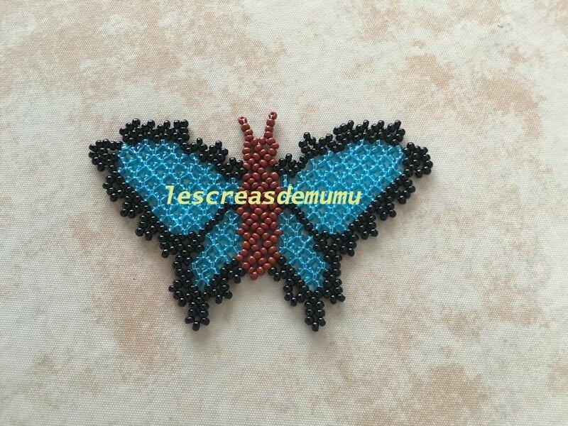Papillon : schéma russe