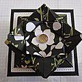 Boîte fleur de lotus