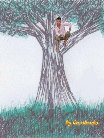 arbre_avec_cm_sans_autographe_by_cc
