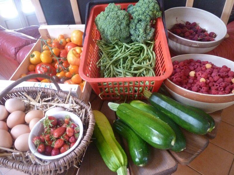 15-récolte du jour (10)