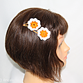 pinces cheveux orange a