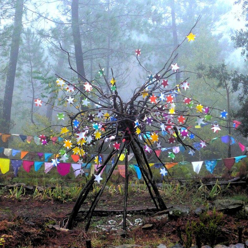 arbre aux étiles sous la pluie yurtao