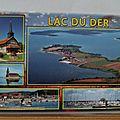 Lac du Der - Chantecoq