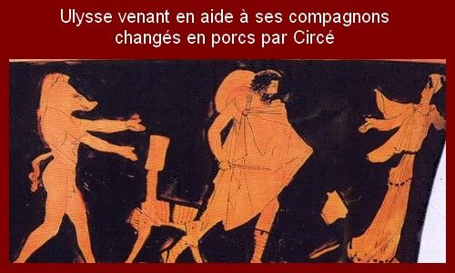 porc-Ulysse-Circe