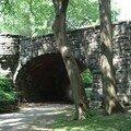 Dans Central Park 6