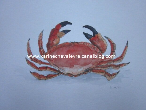"""Le crabe"""