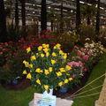 Floralies 108