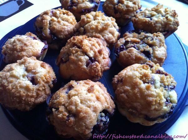 Muffins aux myrtilles (1)