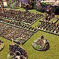 Armée skaven complete (10)