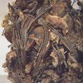 medusa head ckriss burden 1990