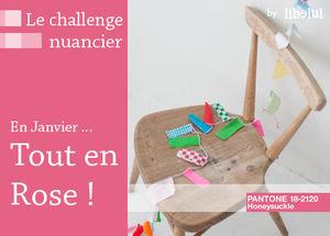 le_challenge_nuancier_janvier_by_libelul