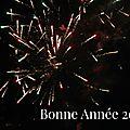 Bonne année 2015 !!!
