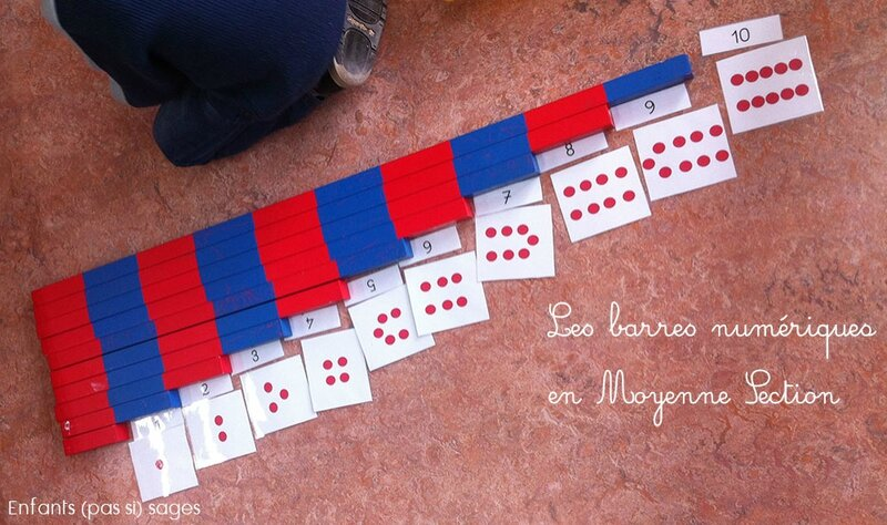 barres-numeriques-MS