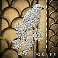 Graff. diamonds precious bird brooches