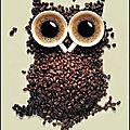hibou cafe
