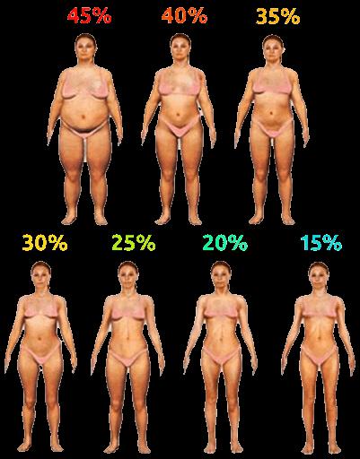 pourcentage-graisse-corps