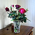 fleurs novembre 2013 013