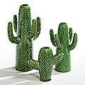 Le monde entier est un cactus...