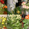 Offrez des fleurs.....