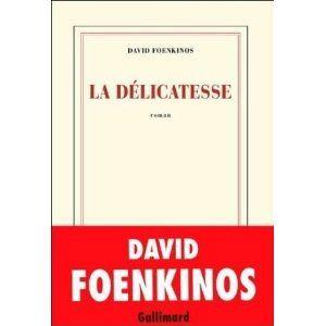 La_d_licatesse_David_Foenkinos_Les_lectures_de_Liliba