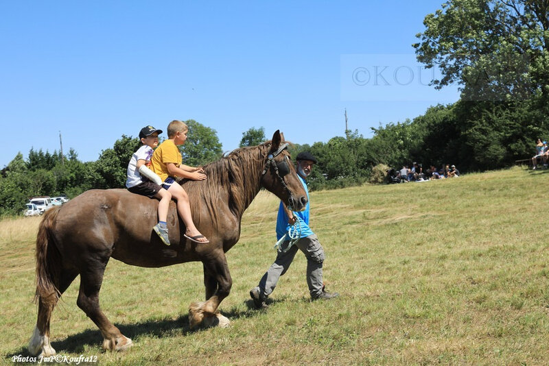 Photos JMP©Koufra 12 - Le Caylar - Fenaison - 13072019 - 0814