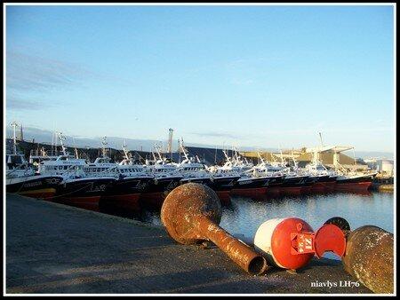 Armada_de_navires_de_p_ches___St_Malo_5