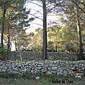 Les murs de pierres