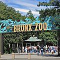 Une étude internationale confirme le rôle éducatif des zoos et des aquariums