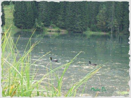 Le_lac_des_Plagnes_D
