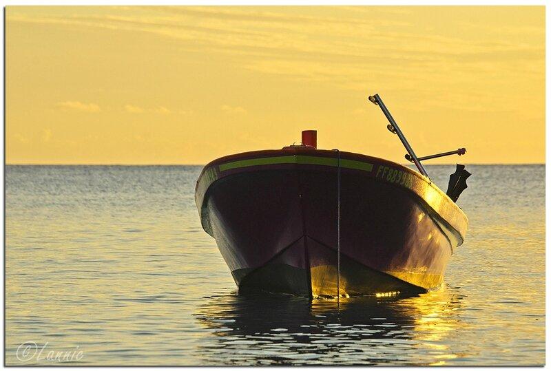 Martinique_2014_2196_bateau