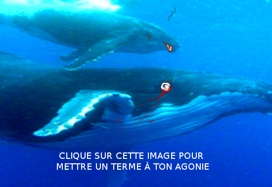 Au_sens_propre_2_6