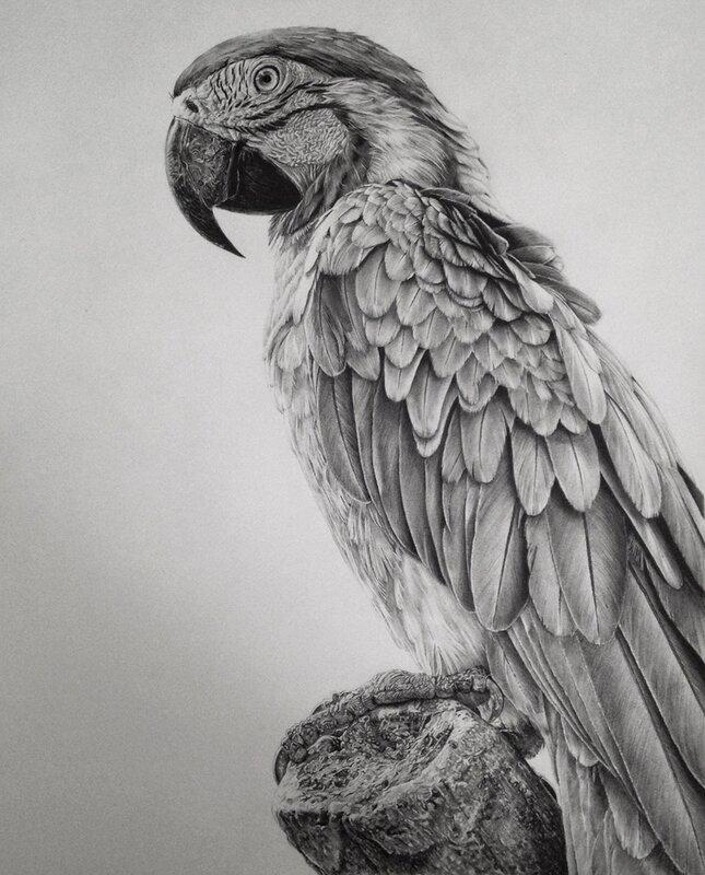 Monica_Lee_illustration_007