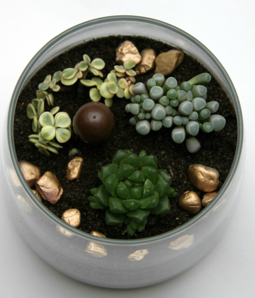 green party truffaut terrarium 016