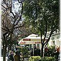 Café grec ...