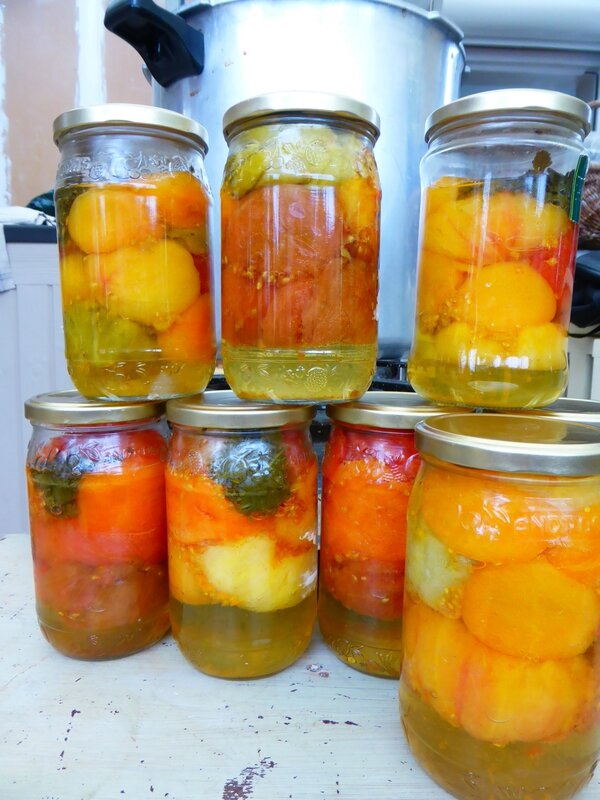 8-conserves tomates (2)