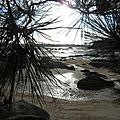 Encore un tour d'île renote à trégastel (côtes d'armor) le 29 décembre 2015 (4)