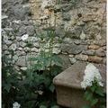 Grès et fleurs