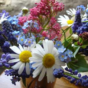 fleurs_d_tails