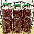 sirop de framboises - - www.passionpotager.canalblog.com