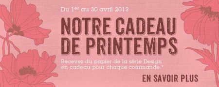 MainAd_GiftwPurchase_Cust_Apr0112_FR