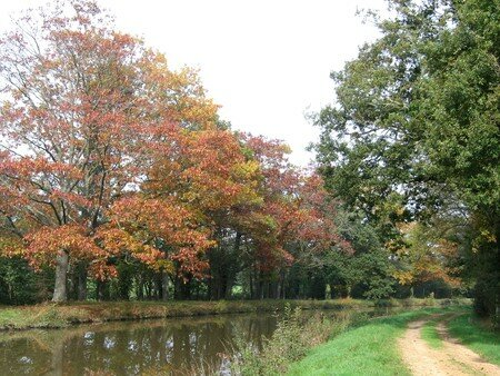 canal_automne