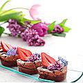 Petits gâteaux fondants au chocolat, sans farine....hummmmmmmm!