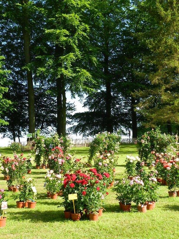 2015 - mai - 16 et 17 - Salon Arts et Jardins de Saint-Romain-de-Colbosc au Château de Gromesnil (42)