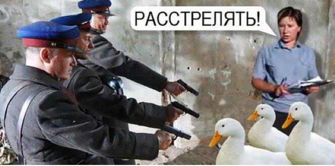 fusillées