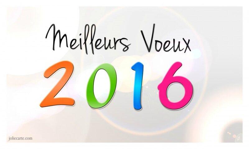 voeux-2016-site