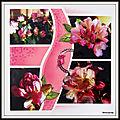 Jardin de mimou - rhododendron