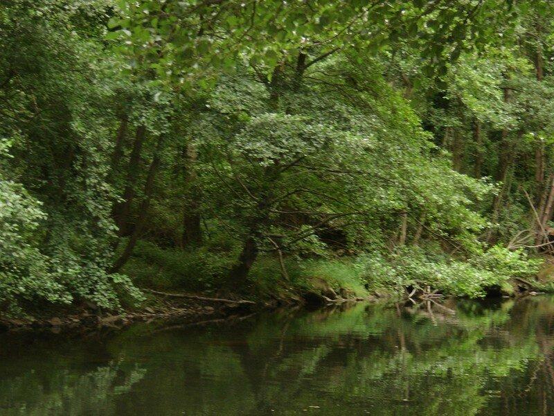 Les Taillades. La rivière 08/2007
