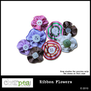 cpd_ribbon_flowers_preview600_01